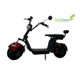 SCOOTER ELÉCTRICA GO-GREEN DELUXE PLUS GTA6M